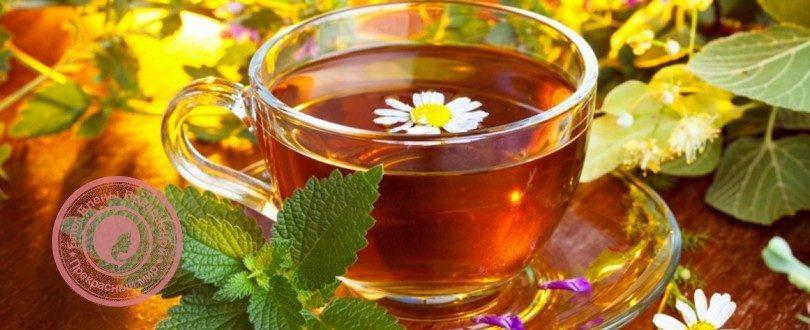 сборы чая