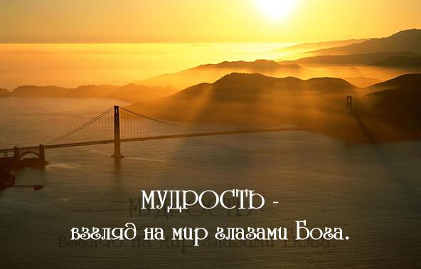 мудрые цитаты для жизни