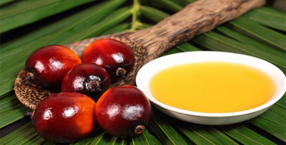 пальмовое масло для организма