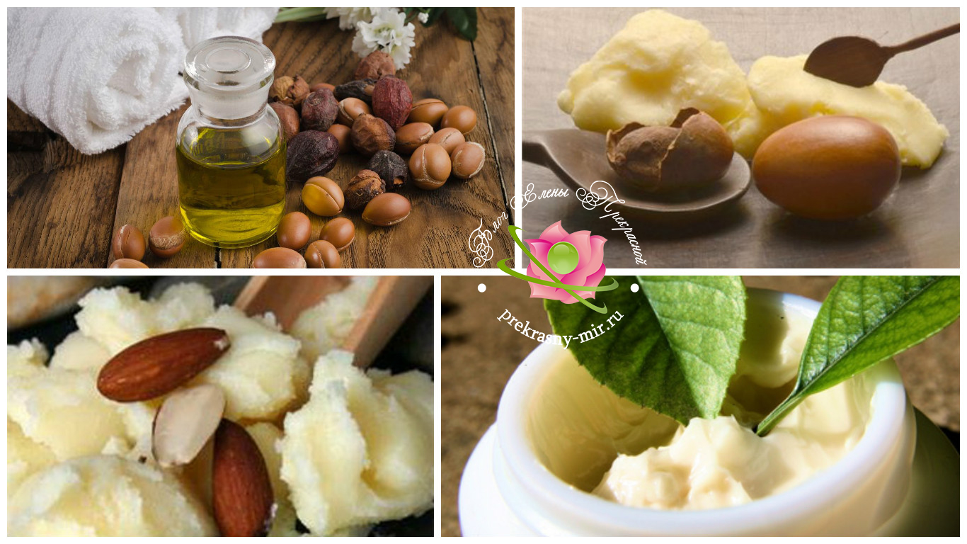 полезные свойства базового масла