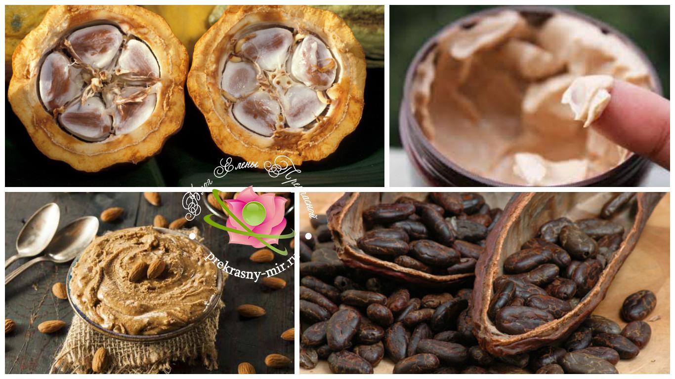 масло какао в космотологии