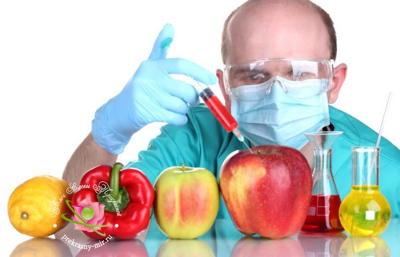 вред или польза ГМО