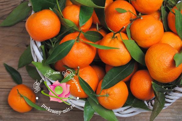 мандарины и калорийность