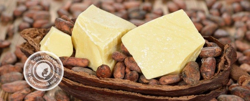 масло какао польза и вред