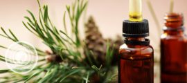пихтовое масло полезные свойства
