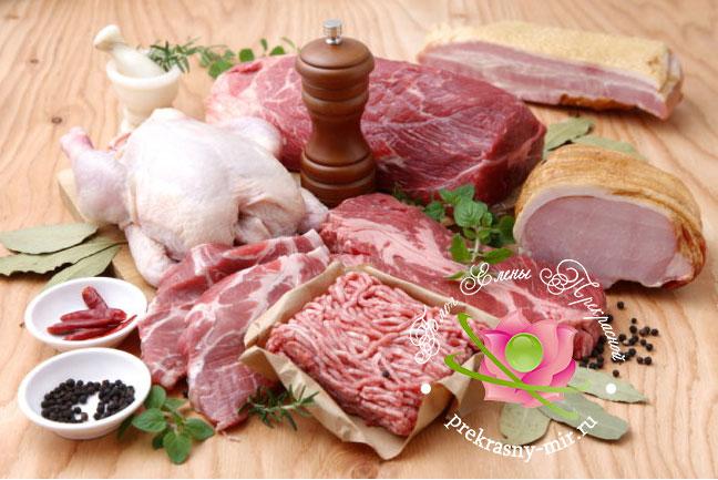 польза и вред мяса