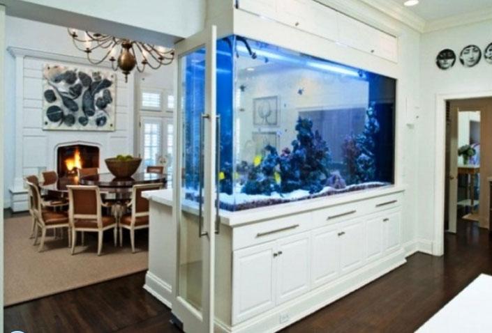 аквариум в прихожей по фен шуй