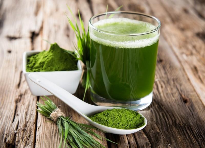 Зеленая энергия - жидкий хлорофилл