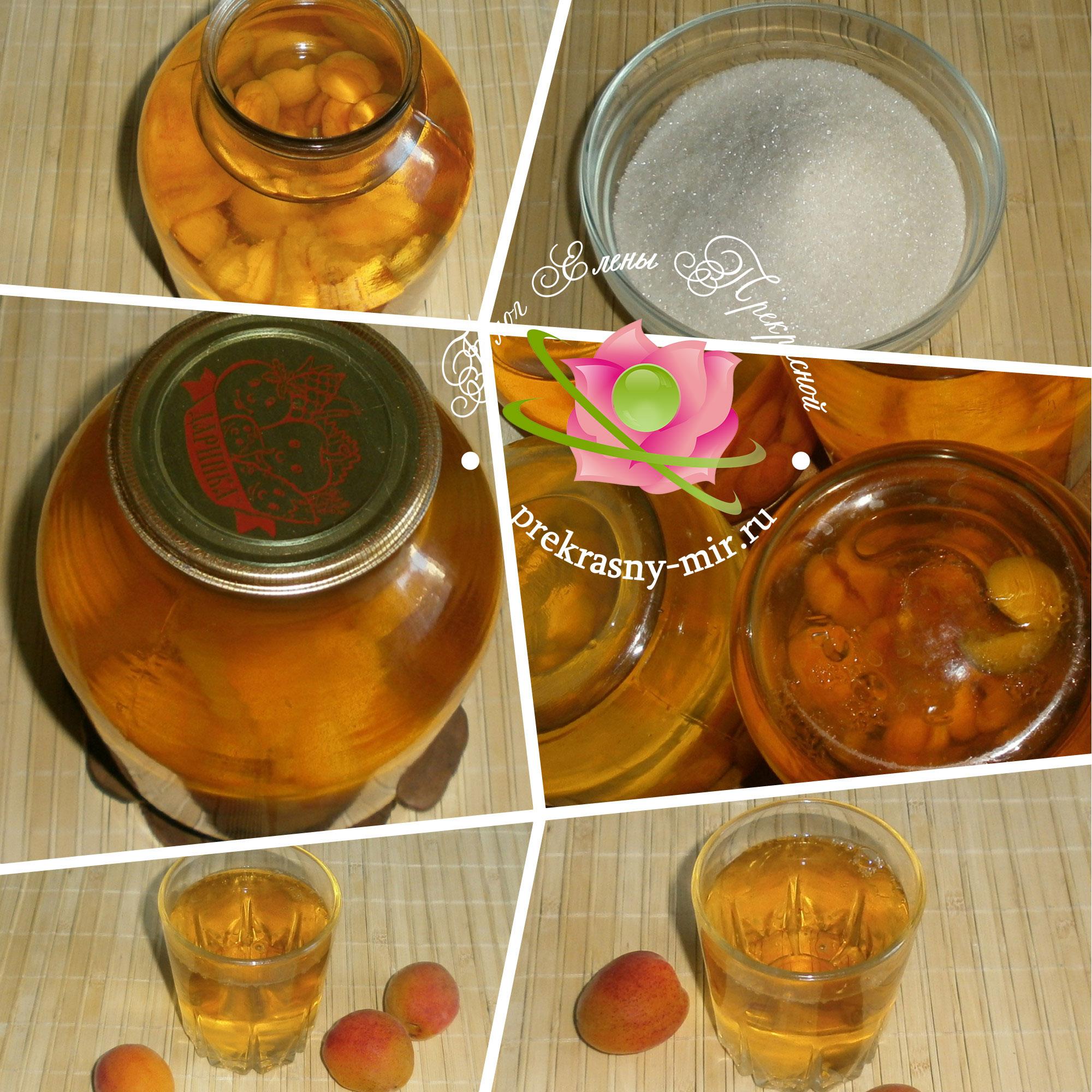 рецепт компота из абрикос с фото