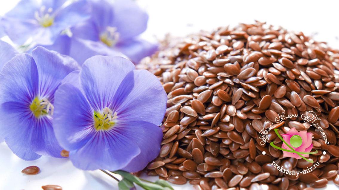 семена льна в лечении