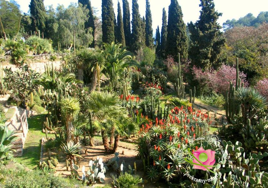 Ботанический сад в Ллорет де Мар