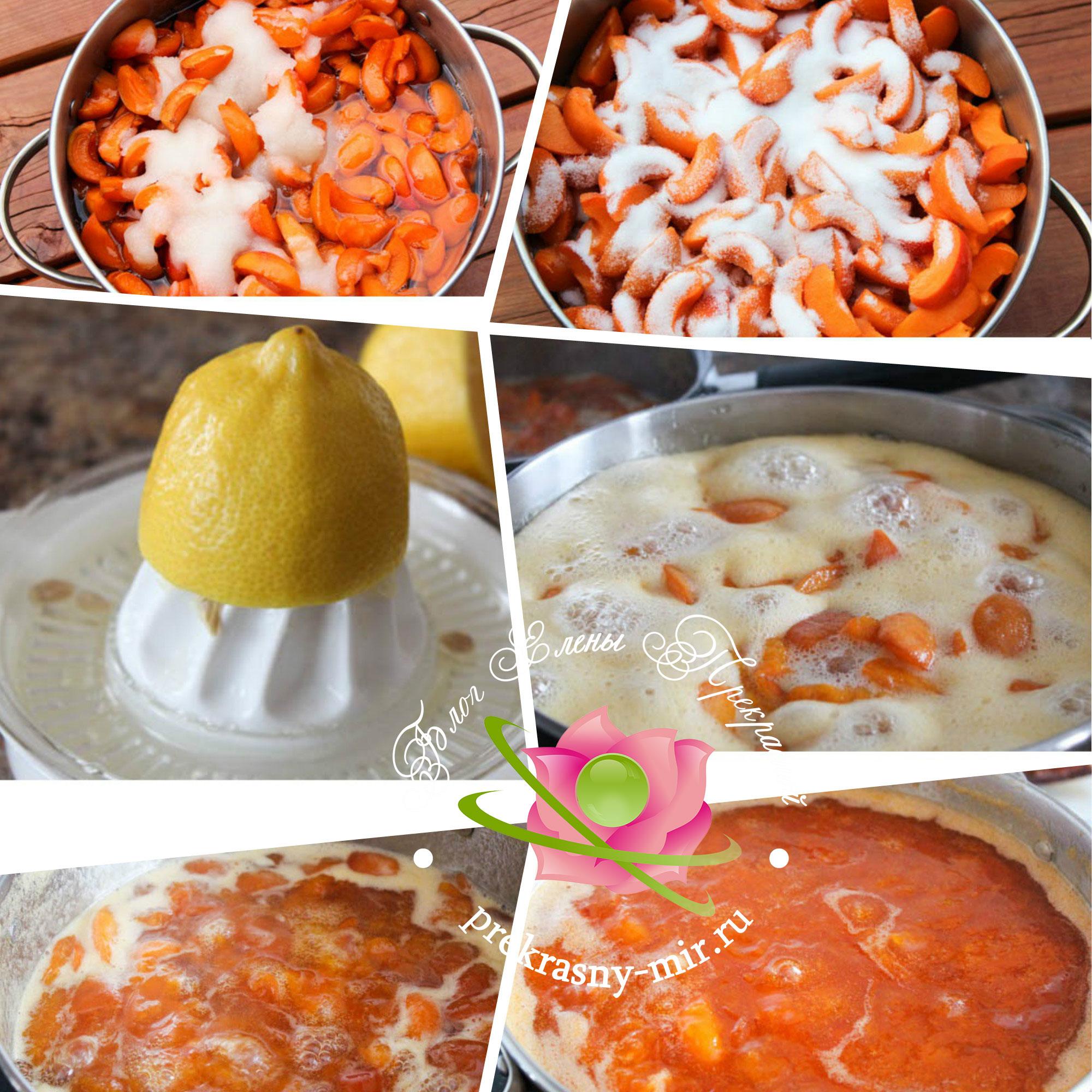 рецепт абрикосового джема