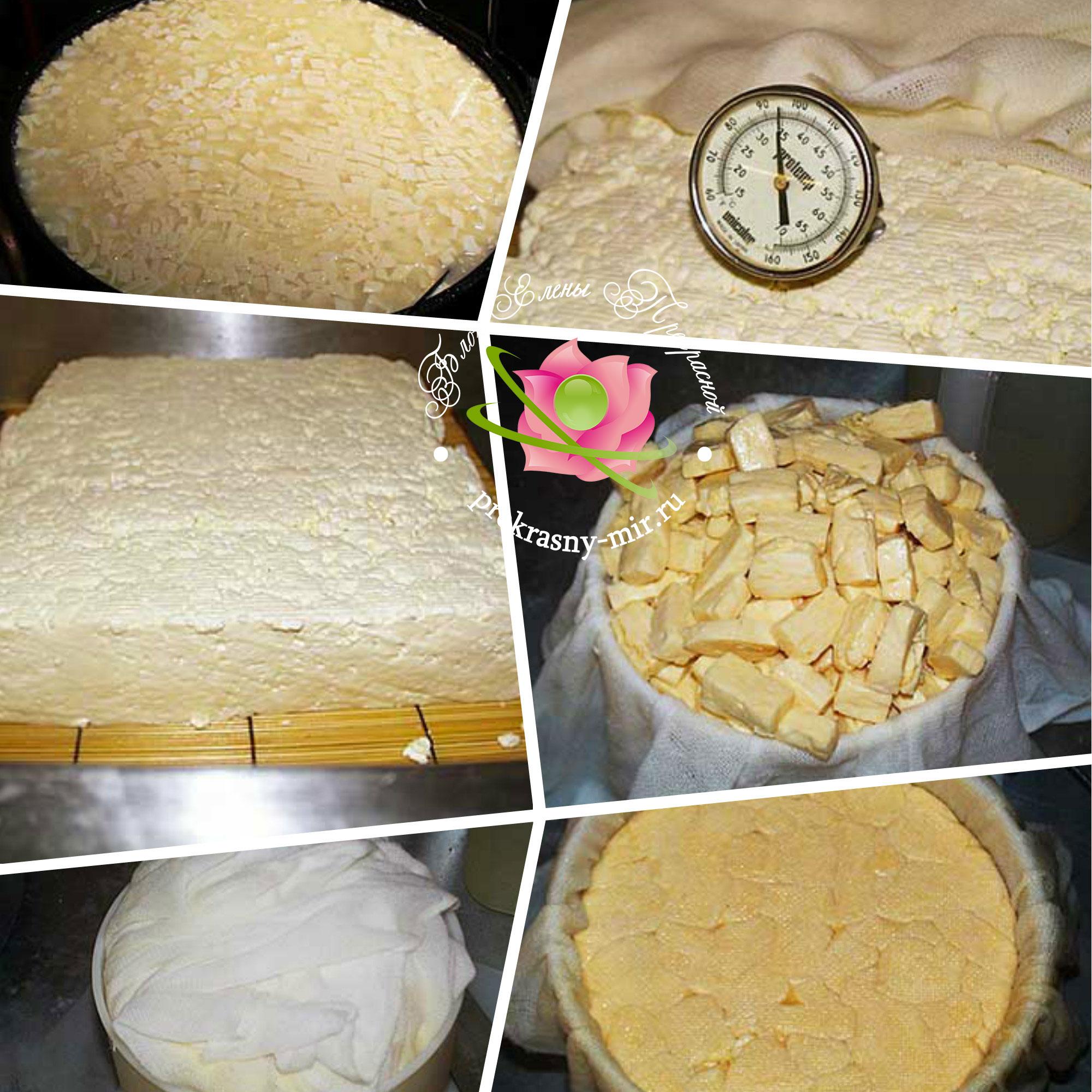 как приготовить сыр чеддер