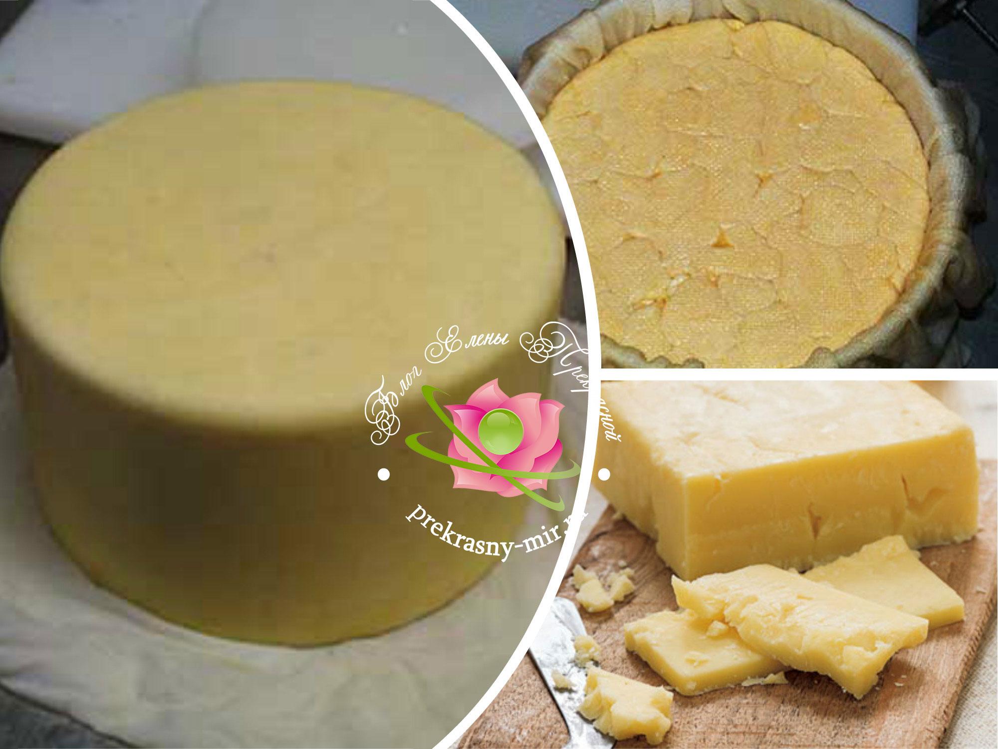 сыр из творога в домашних условиях рецепт