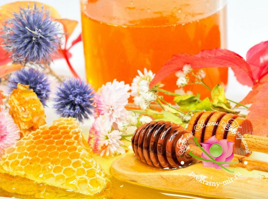 для чего полезен мед