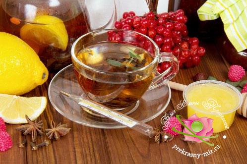 рецепты лечения простудных заболеваний