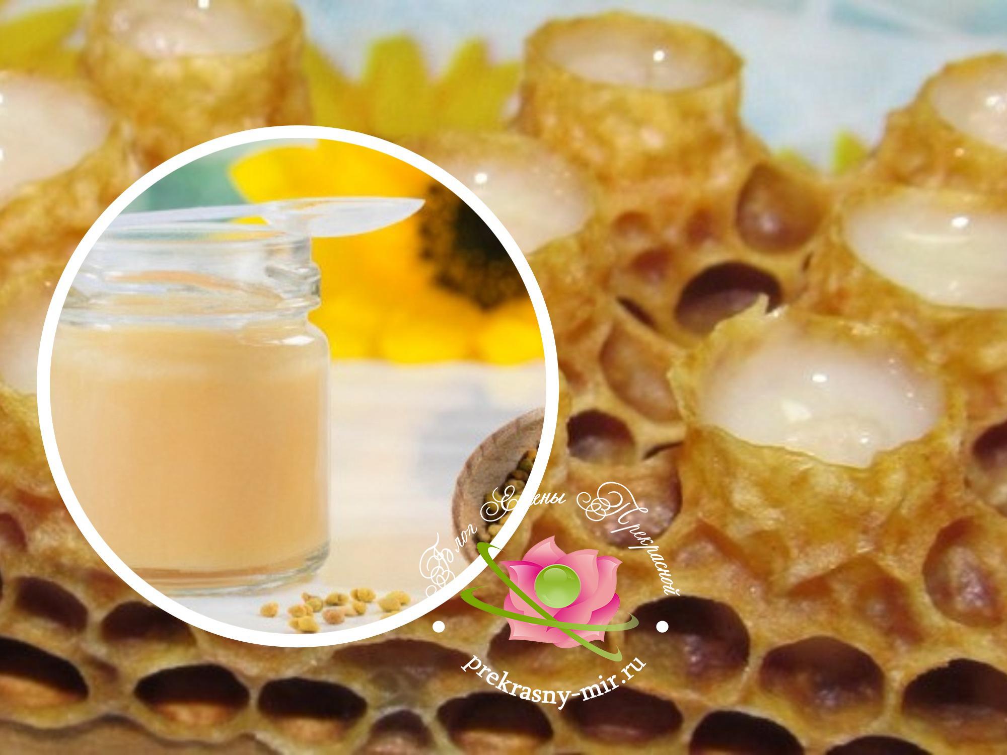 Полезные свойства трутневого молочка для организма