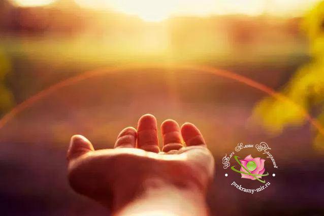 Медитация осознанности