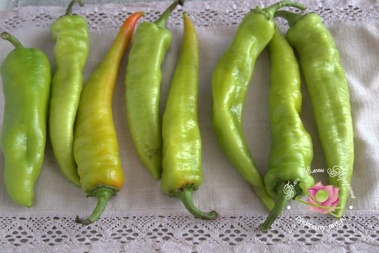 квашеный острый перец по-армянски на зиму