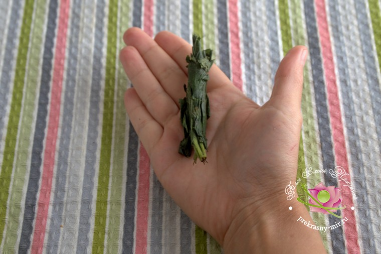 пошаговый рецепт ферментированный чай из листьев клубники