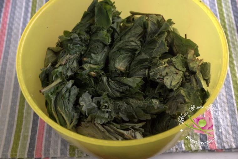 ферментированный чай из листьев клубники пошаговый рецепт