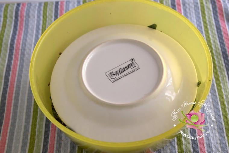ферментированный чай из листьев клубники в домашних условиях