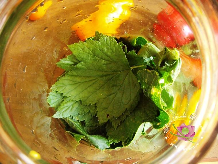 консервированное ассорти из овощей рецепт с фото