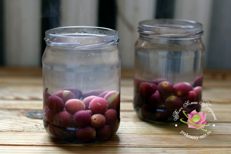 Компот из винограда без стерилизации на зиму рецепт