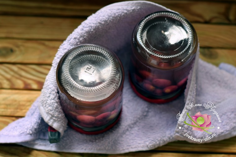 Как приготовить компот из винограда без стерилизации на зиму рецепт