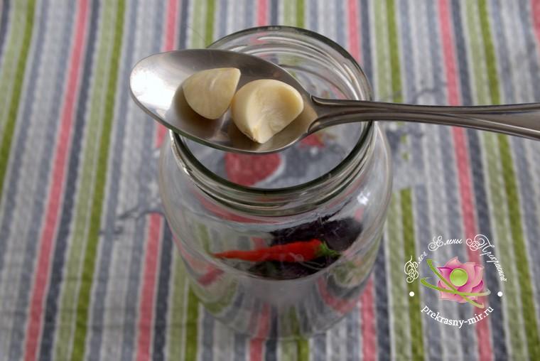 консервированные помидоры с базиликом рецепт с фото