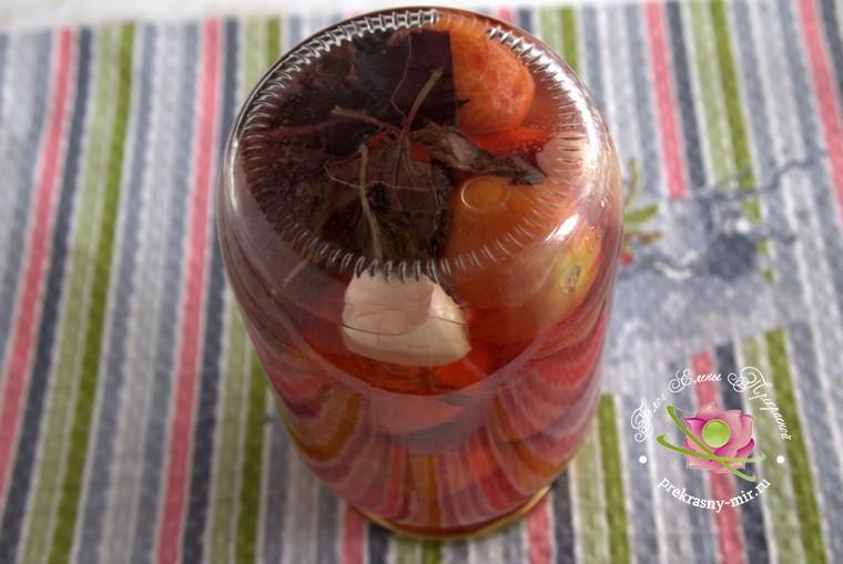 как приготовить на зиму консервированные помидоры с базиликом рецепт с фото