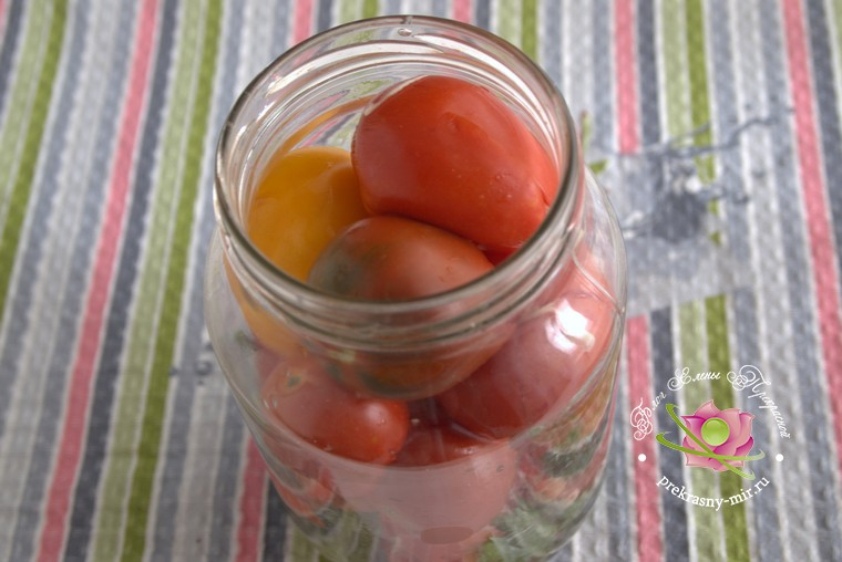 малосольные помидоры с чесноком и петрушкой рецепт
