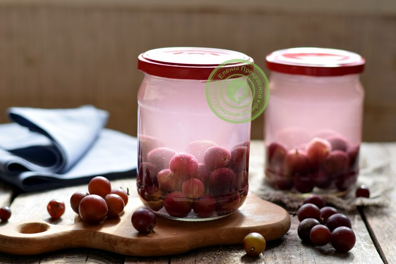 компот из винограда без стерилизации на зиму рецепт в домашних условиях