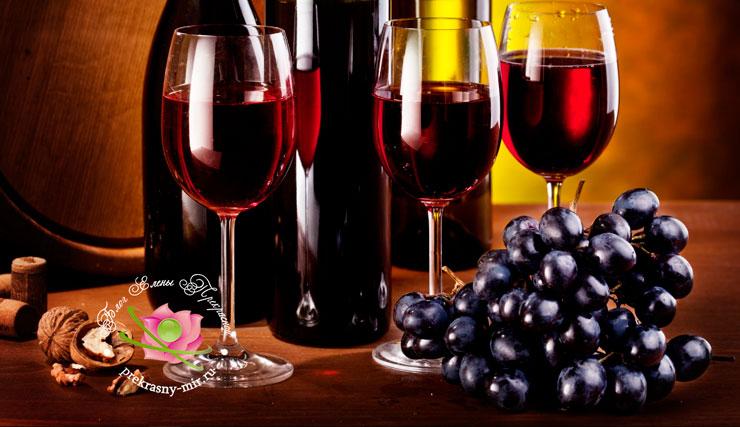 Как выбрать вино в магазине при покупке