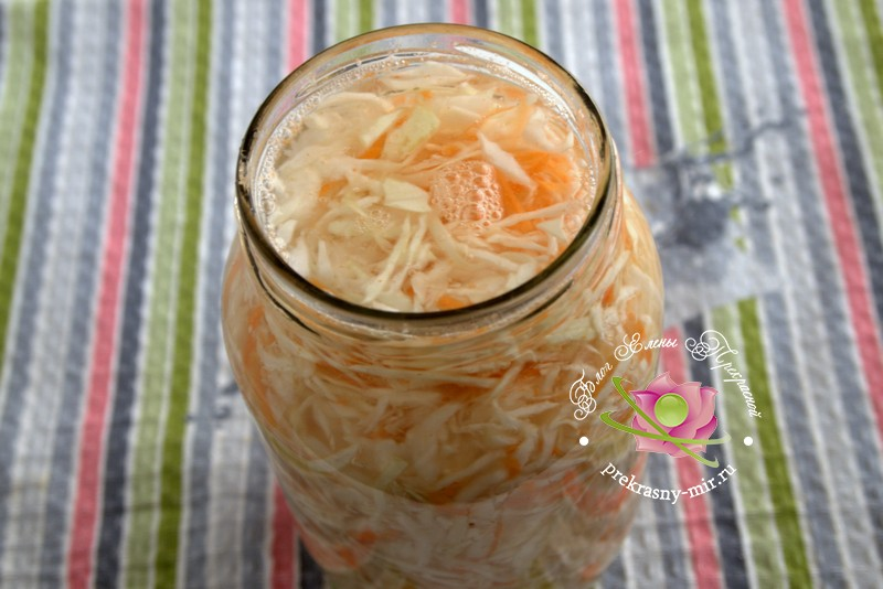 Квашеная капуста с яблочным уксусом рецепт