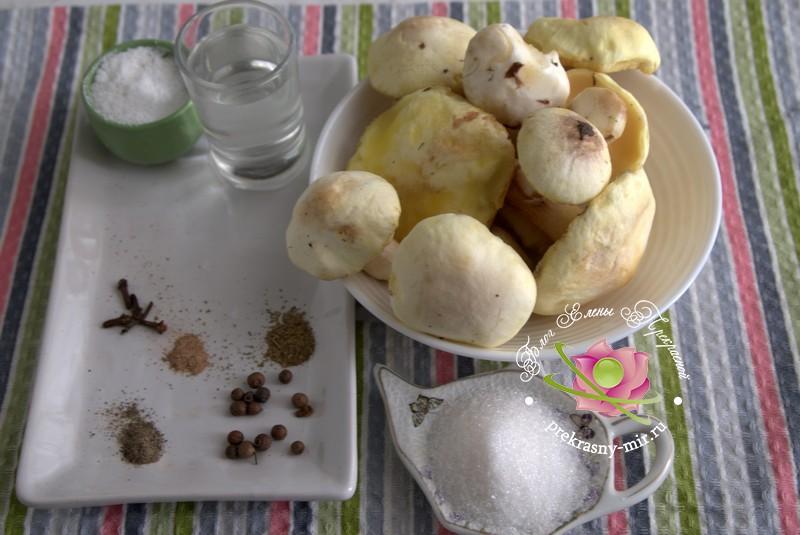 консервированные лесные грибы на зиму: продукты