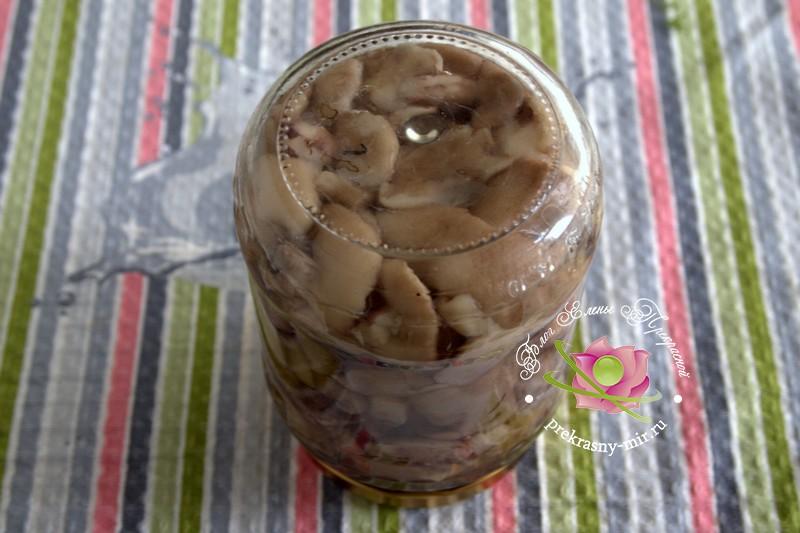 консервированные лесные грибы на зиму рецепт в домашних условиях