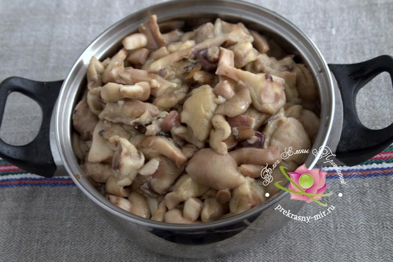 Маринованные маслята с яблочным уксусом рецепт