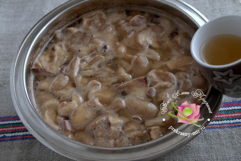 Маринованные маслята с яблочным уксусом рецепт в домашних условиях