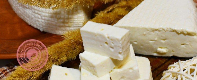сыр в мультиварке с пепсином рецепт в домашних условиях