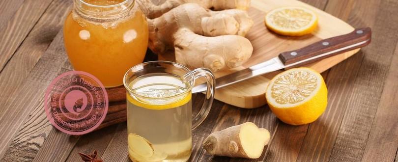 Имбирь, мед и лимон от простуды: рецепт смеси