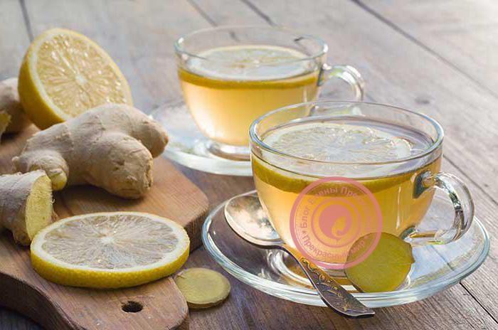 имбирный чай с лимоном и медом рецепт от простуды