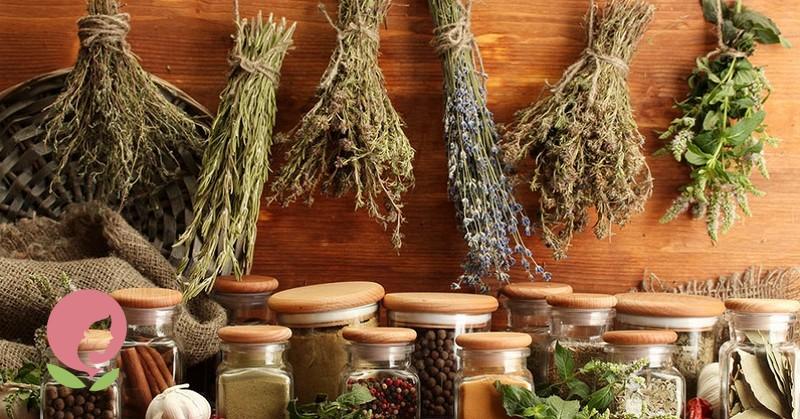 лечебные травы от кашля