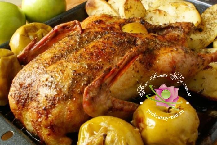 Утка фаршированная яблоками: рецепт в домашних условиях