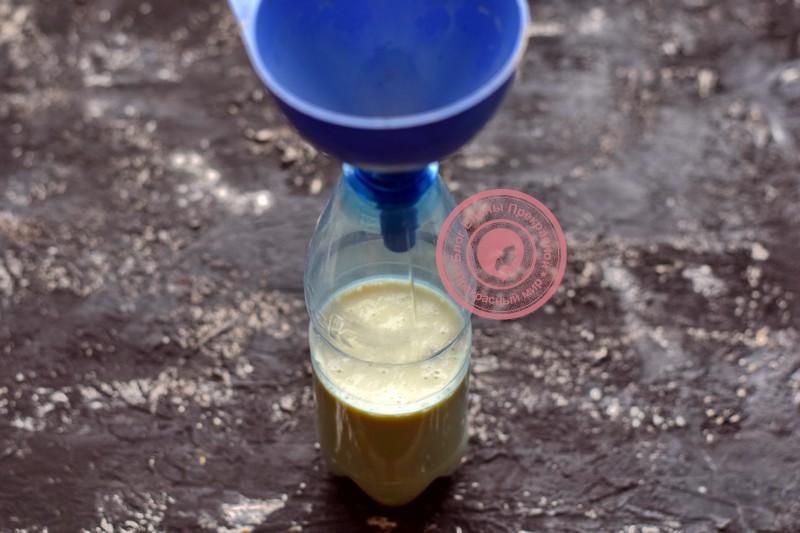ажурные блины из бутылки рецепт на Масленицу