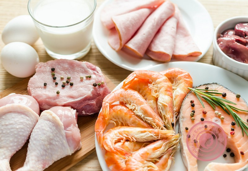 белковая пища список продуктов для диеты