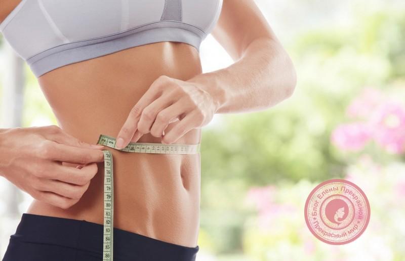 общие принципы питания на белковой диете
