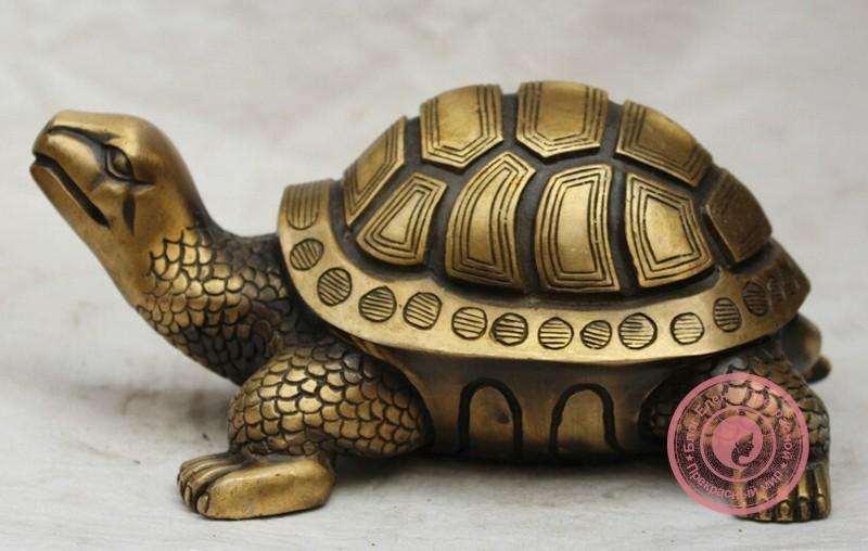 Черепаха по фен шуй - значение и талисман