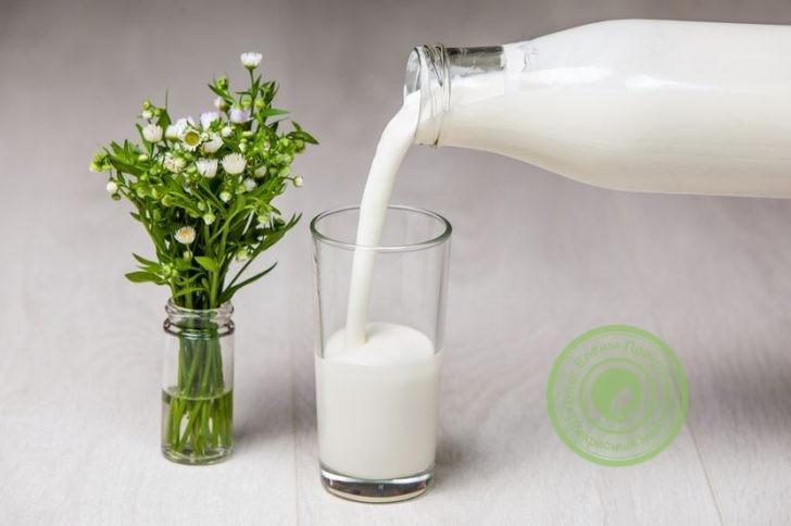 протеиновая кефирная диета