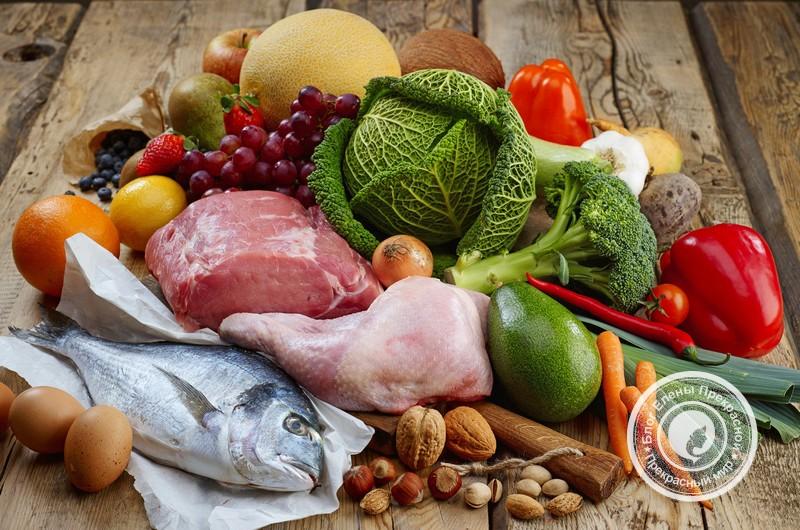 Разрешенные продукты для диеты